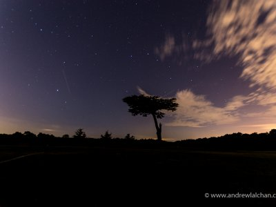 Perseid meteor shower in Cassiobury Park