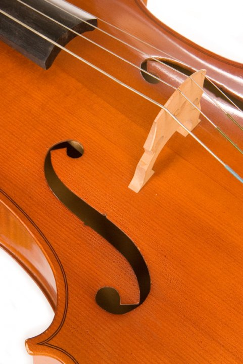 String Instrument Tuition with Hertfordshire Music Service