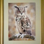 Watchful, Eagle Owl