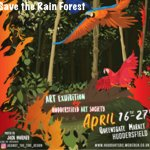 Art Exhibition - Save the Rain Forest