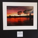 Market Showcase: Matthew Brown Photography Exhibition