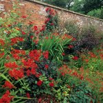 The Subtle Science and Exact Art of Colour in Garden Design