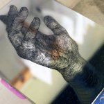 'First Steps in Etching' Course 19th & 20th September 2015