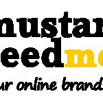 Mustard Seed Media / about
