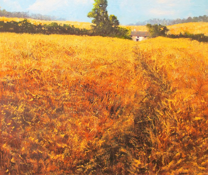 Wheat Fields by Marion Sawl