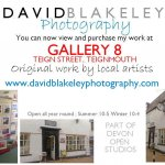 David Blakeley in Gallery 8 Teignmouth