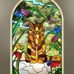 Maine Coon ginger cat window