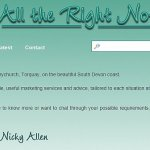 Nicky Allen / All the Right Notes