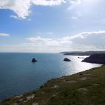 TorCoastCountry / Torbay Coast & Countryside Trust